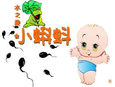 小蝌蚪儿童水上主题乐园加盟