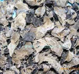 黄松甸食用菌招商加盟