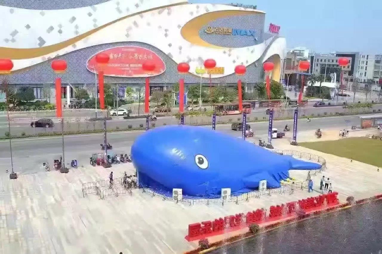 鲸鱼岛乐园出租