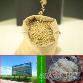 京贡国香大米招商加盟