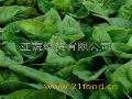 亚蔬经贸蔬果招商加盟