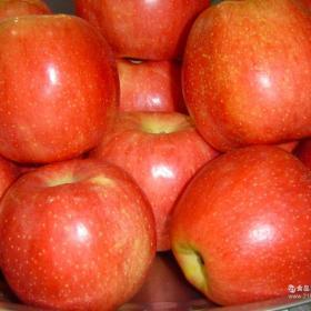 龙大牌水果招商加盟