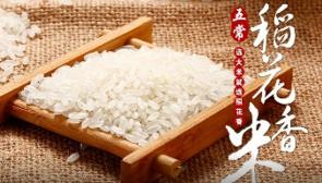 五常稻花香大米加盟