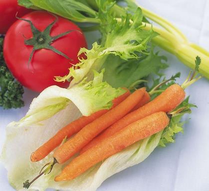 蔬菜食品加盟