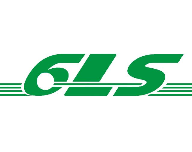 6ls绿色国际速递加盟