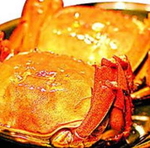 江苏红膏大闸蟹加盟