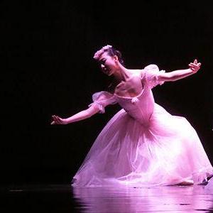 紅菱舞蹈藝術加盟