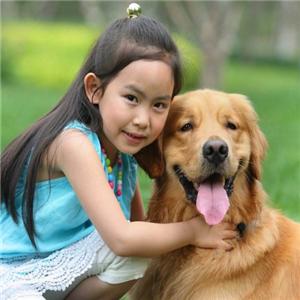 巴米哥寵物護理加盟