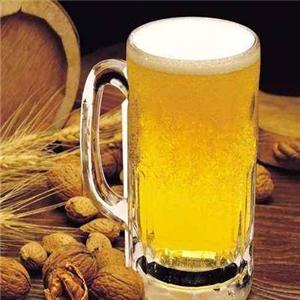 衡水九州啤酒加盟