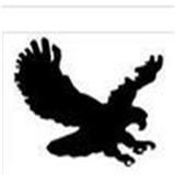 美洲鹰女鞋加盟