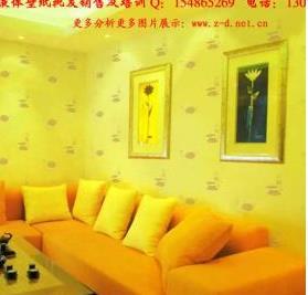 中鼎液体壁纸建材墙艺招商加盟