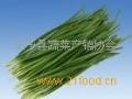晋丹蔬菜招商加盟