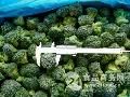 天丰食品速冻蔬菜招商加盟