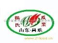 杨氏瓜菜招商加盟