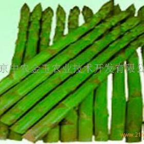 中农金玉农业招商加盟