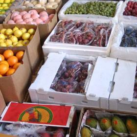 水果市场招商加盟