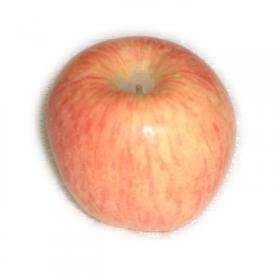 北方水果招商加盟