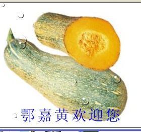 嘉魚無公害蔬菜招商加盟