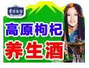 雪域圣烽高原枸杞酒招商加盟