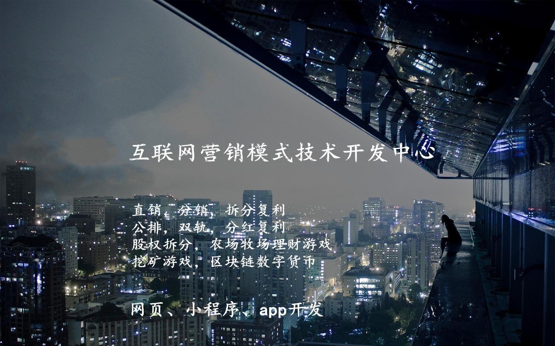 微商系统加盟开发