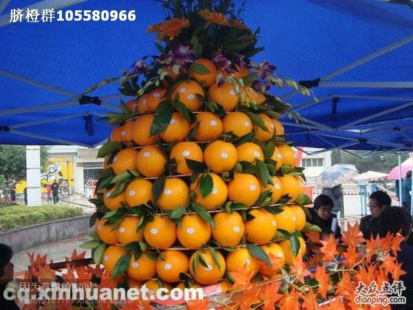 奉节脐橙加盟