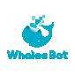 鲸鱼机器人青少年人工智能教育