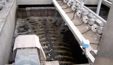 德用循环水消毒设备招商加盟