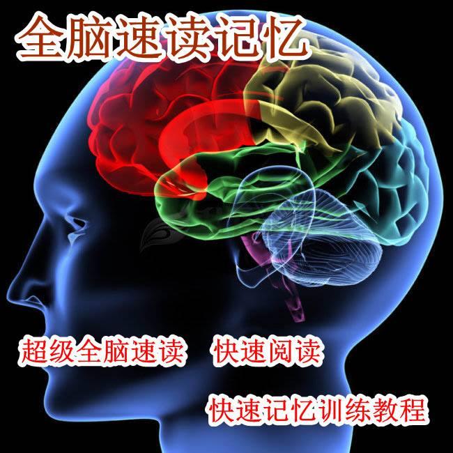 全腦開發快速閱讀代理加盟