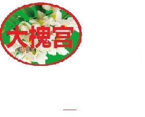 大槐宫固体茶招商加盟